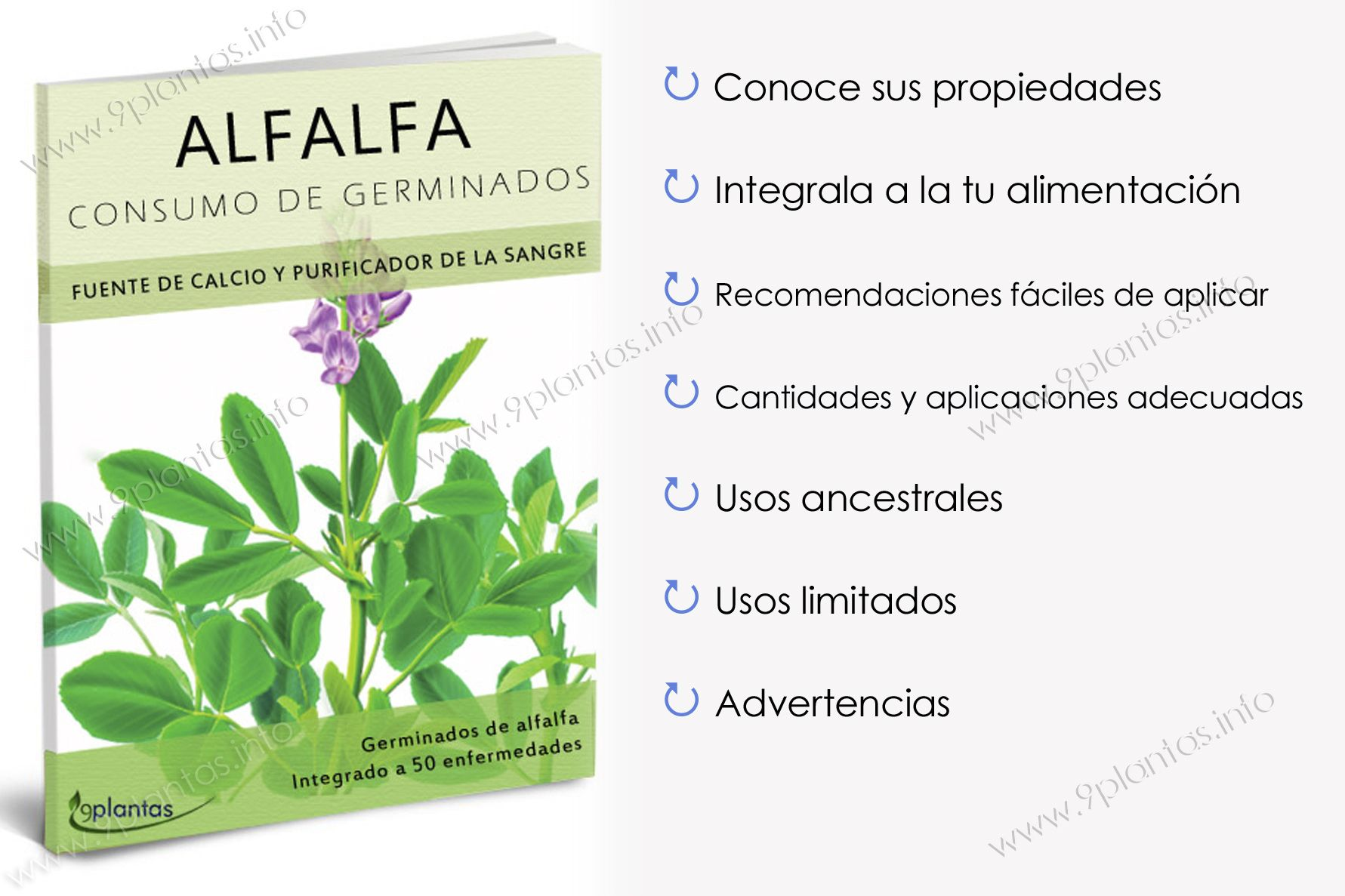 E-book | Alfalfa: germinados, brotes