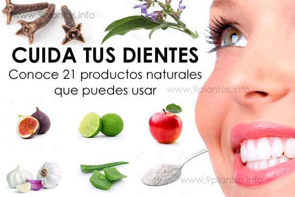 Dientes y salud bucal 21 productos naturales recomendados