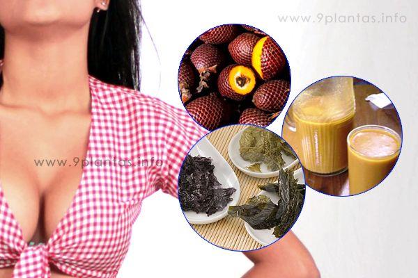 Senos grandes bellos y saludables, alimentos y recomendaciones