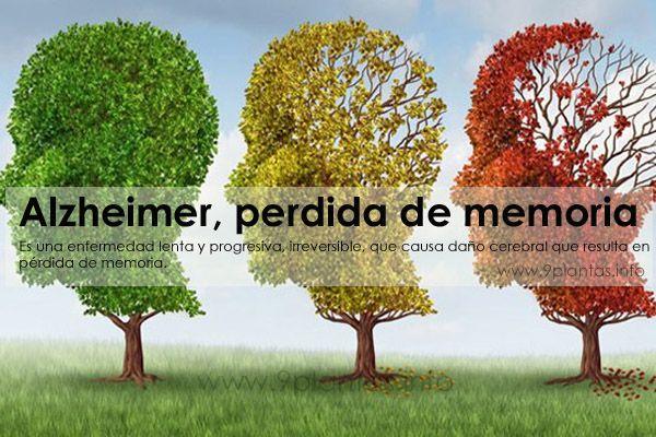Alzheimer, perdida de memoria