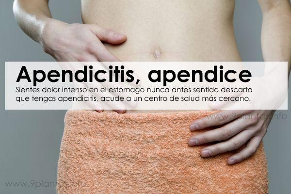 Apendicitis, apendice