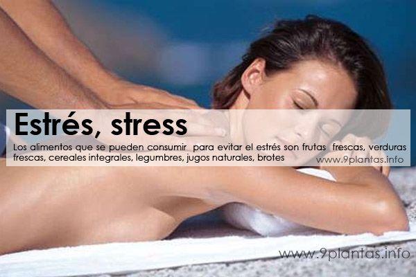 Estrés, stress
