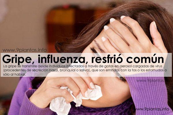 Gripe, influenza, resfrió común