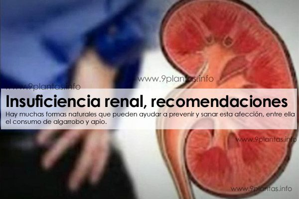 Riñones, insuficiencia renal