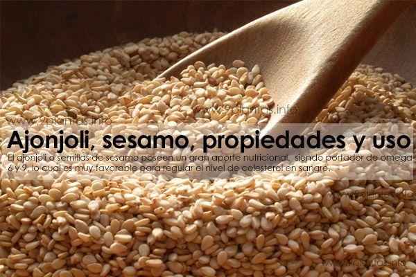 Ajonjoli, sesamo, propiedades y uso (Sesamum Indicum)
