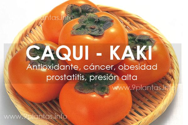 Caqui, kaki, fruto antioxidante