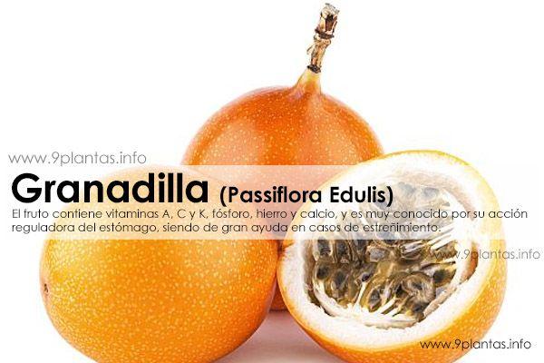 Granadilla propiedades (Passiflora Edulis)