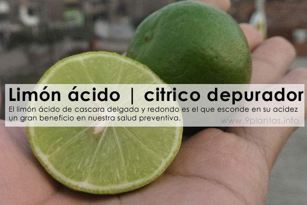 Limón Ácido | citrico depurador
