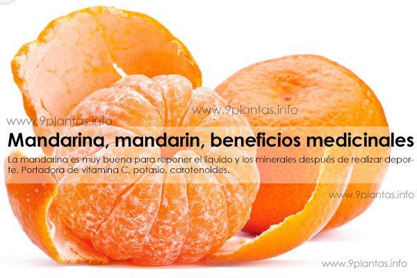 Mandarina, mandarin, beneficios medicinales (Citrus Reticulata)