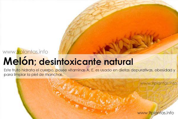 Melon, melones desintoxicante, depurativo natural
