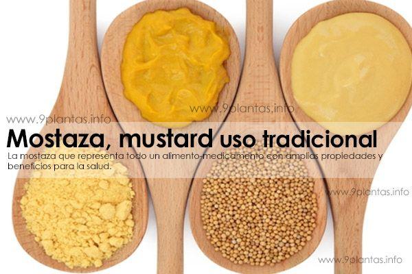 Mostaza, mustard uso tradicional (Brassica Alba L.)