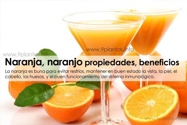 Naranja, naranjo propiedades, beneficios