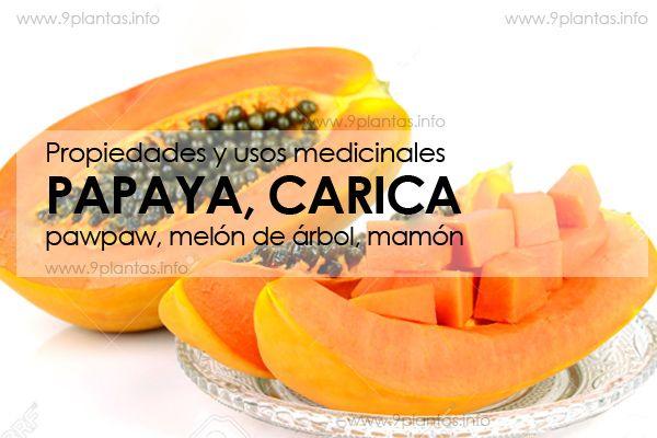 Papaya, carica, pawpaw melón de árbol propiedades medicinales