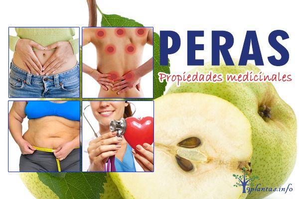 Peras, pear tree: mas que una fruta digestiva