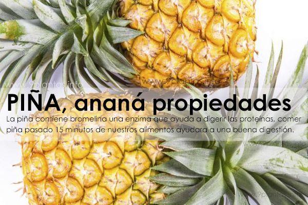 Piña, ananá, propiedades y uso tradicional
