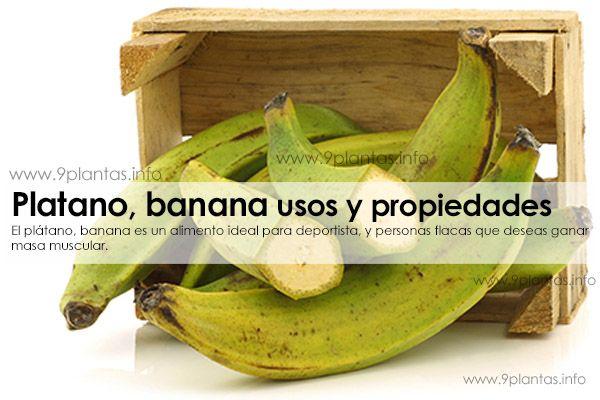 Platano, banana usos y propiedades