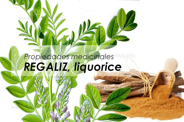 Regaliz, liquorice, propiedades naturales