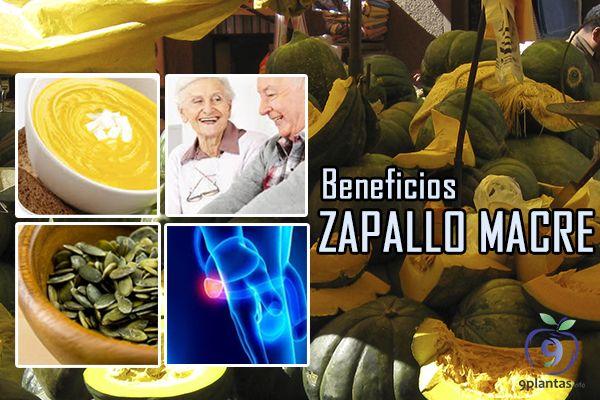 Zapallo beneficios del macre peruano