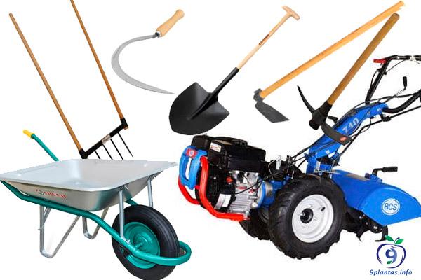 Herramientas que no deben faltar en tu jardín o huerto