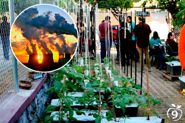 Huertos GRANDES BENEFICIOS ambiental, social y económico