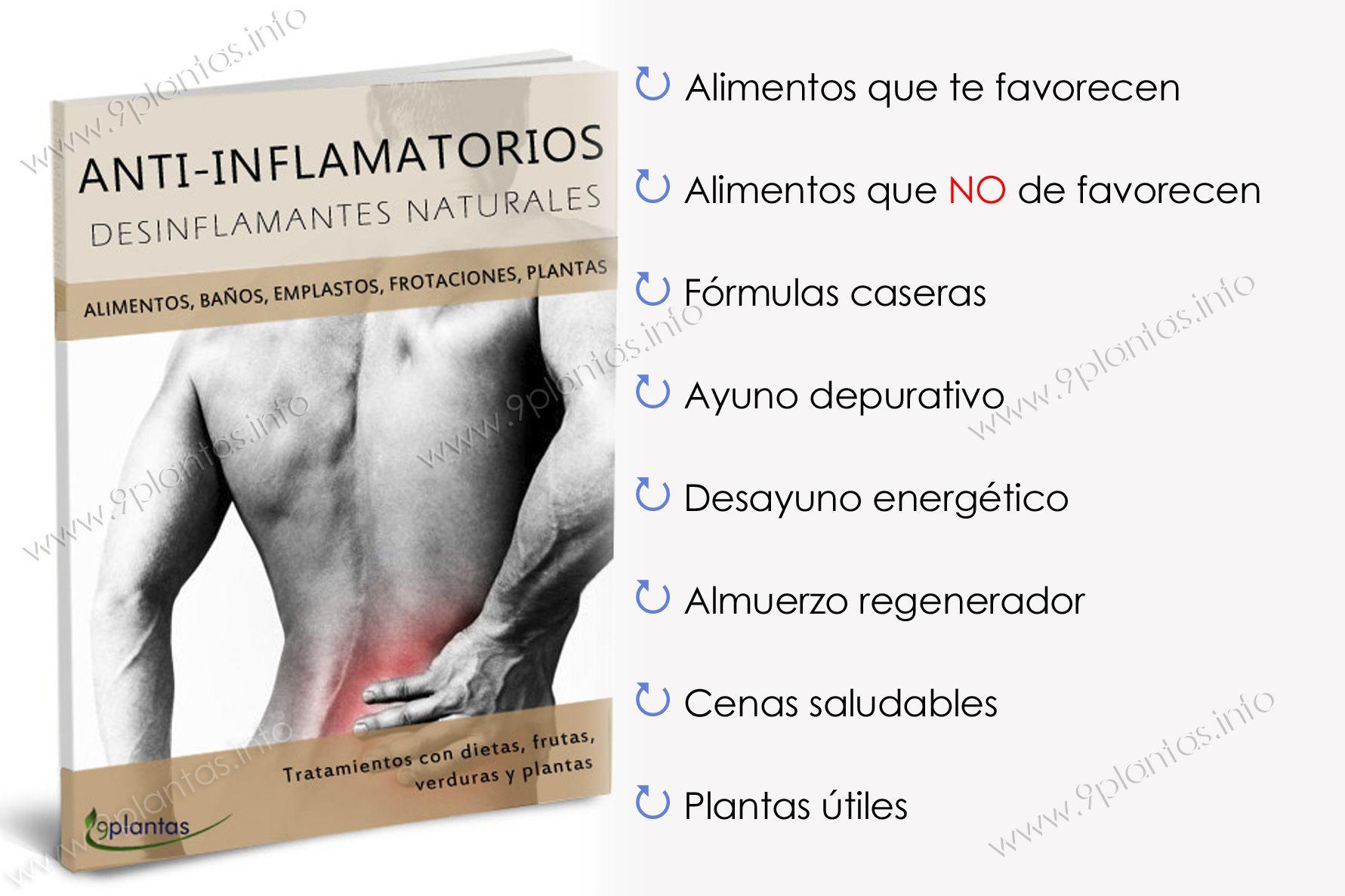E-book | anti-inflamatorios, desinflamantes naturales