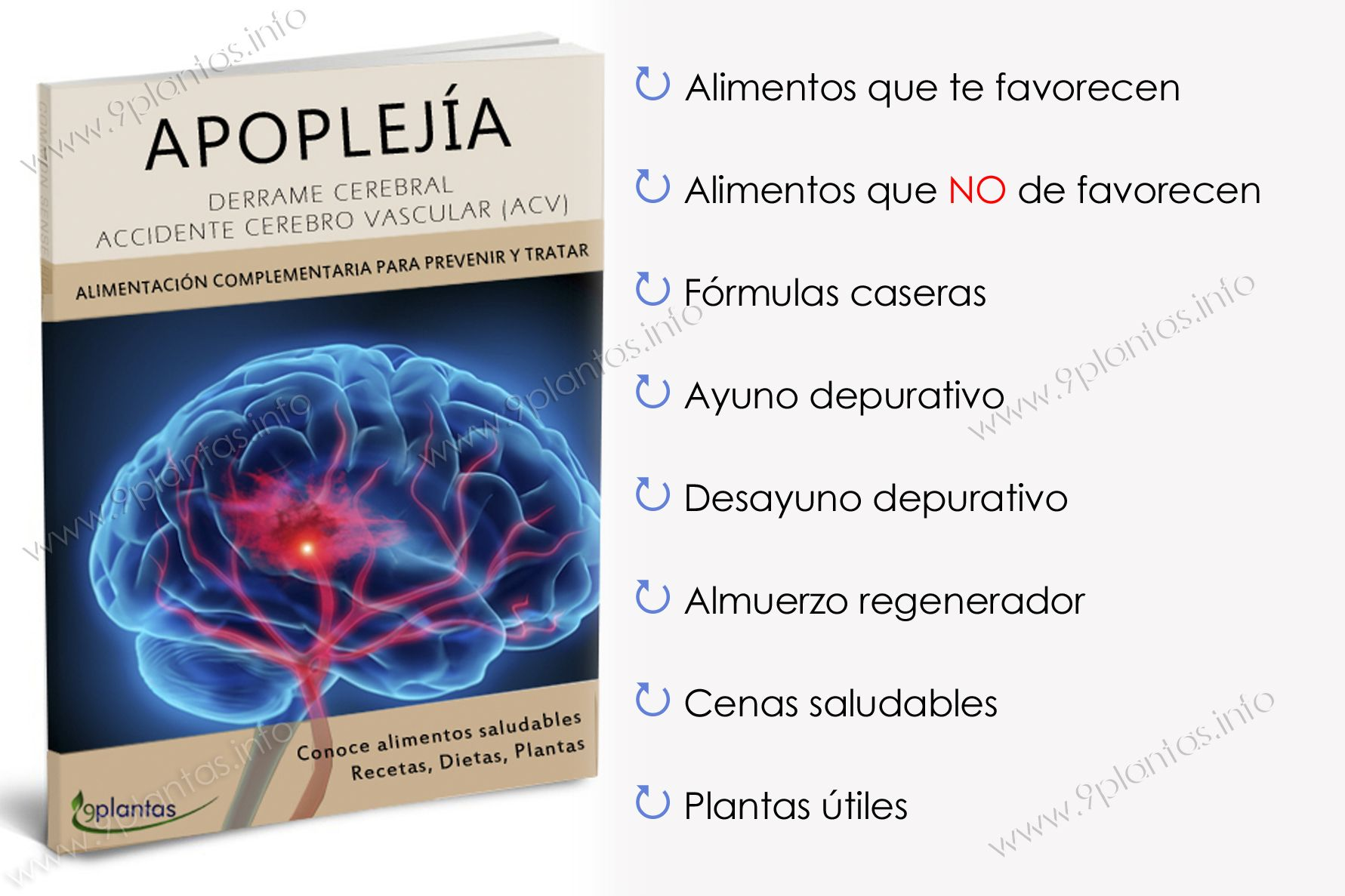 E-book | Apoplejía, derrame cerebral (ACV)