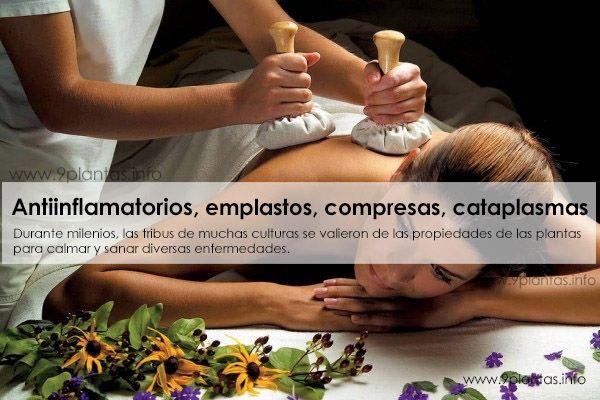 Anti-inflamatorios, emplastos, compresas, cataplasmas