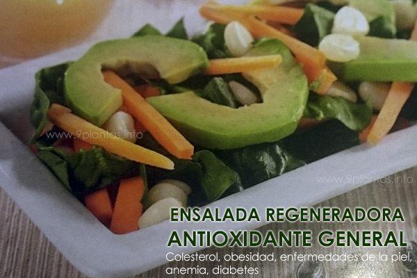 Ensalada regeneradora, antioxidante general