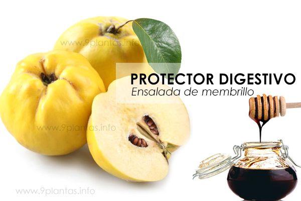Protector digestivo, ensalada de membrillo