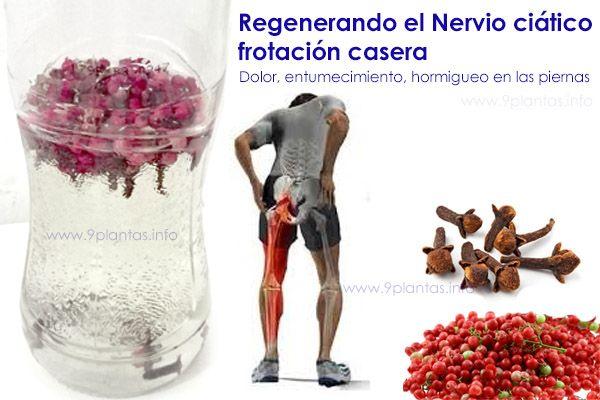 Frotación regeneradora del nervio ciático