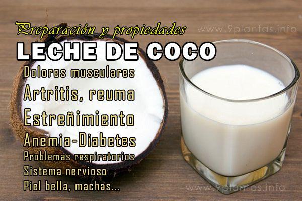 Leche de coco, preparación y propiedades