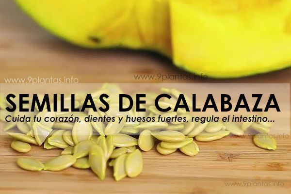 re-semillas-calabaza.jpg