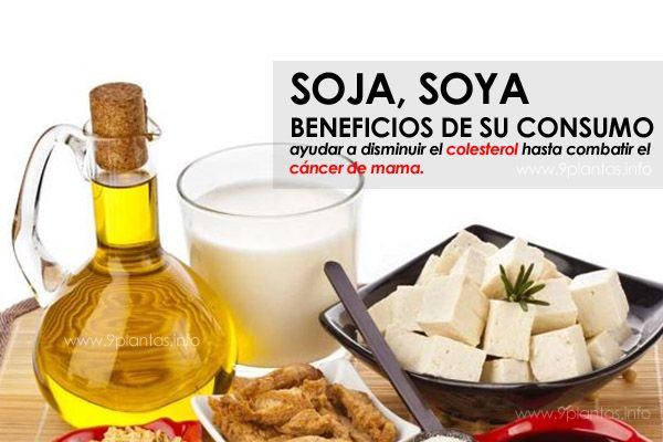 Soja, soya beneficios de su consumo