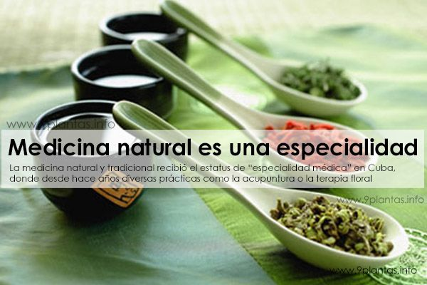 Medicina tradicional o medicina natural es una especialidad medica